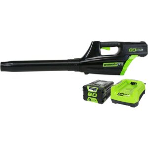 Best Electric Leaf Blower GreenworksPro