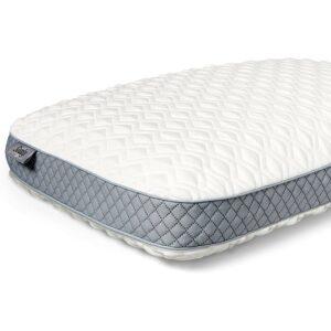 Best Memory Foam Pillows Sealy