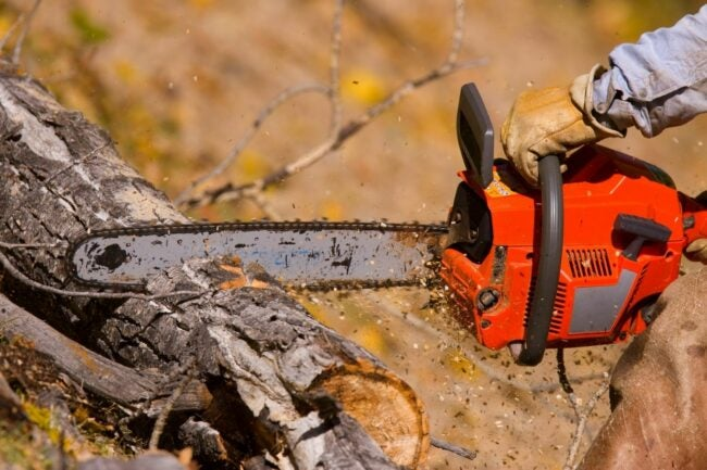 The Best Chainsaw Chain Option