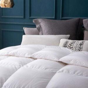 The Best Down Comforter Option: Globon Luxurious Goose Down Comforter