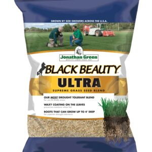 The Best Grass Seed Options: Jonathan Green 10323 Black Beauty Ultra Mixture