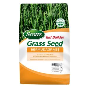 The Best Grass Seed Options: Scotts 18353 Turf Builder Bermudagrass