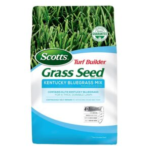 The Best Grass Seed Options: Scotts Turf Builder Grass Seed Kentucky Bluegrass Mix