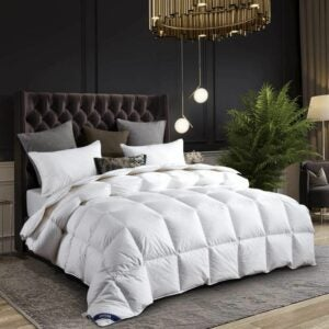 The Best Comforter Option: drtoor Luxurious Down Comforter, All Seasons Duvet Insert