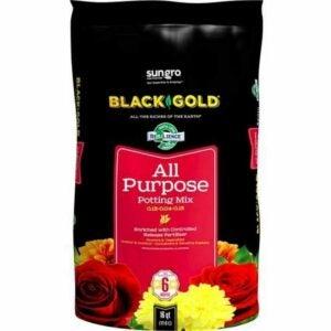The Best Potting Soil Option: Black Gold 1310102 16-Quart All Purpose Potting Soil