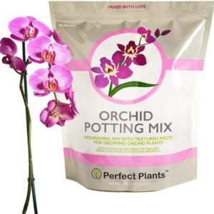 The Best Potting Soil Option: Perfect Plants All Natural Orchid Potting Mix 4 qt