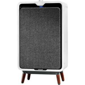 Best Air Purifier For Smoke Bissell