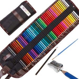 最好的彩色铅笔选择:穆尔-高级艺术彩色铅笔,48支