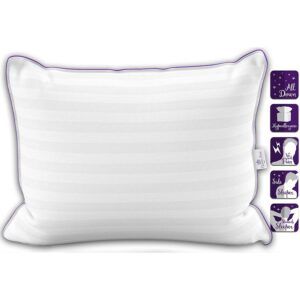 Best Down Pillows Queen
