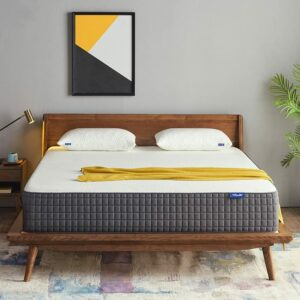 Best Mattress For Back And Neck Pain Queen