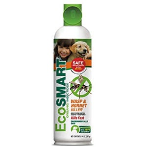 The Best Wasp Spray Options: EcoSMART Organic Wasp and Hornet Killer