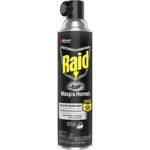 The Best Wasp Spray Options: Raid Wasp and Hornet Killer, 17.5 OZ