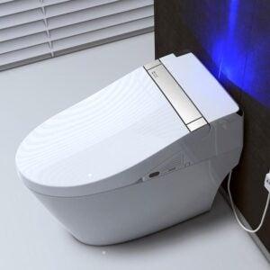 The Best Dual Flush Toilet Option: WOODBRIDGE Venezia Intelligent Dual Flush Toilet