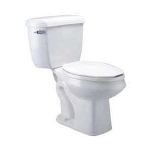 The Best Dual Flush Toilet Option: Zurn White WaterSense Dual Flush Toilet
