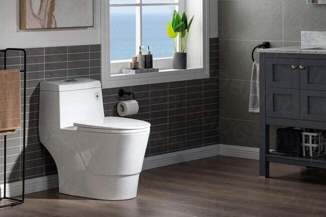 The Best Dual Flush Toilet Options