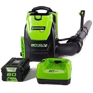 Best Backpack Leaf Blower Options: Greenworks 80V 145MPH
