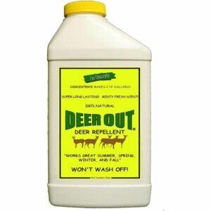 The Best Deer Repellent Option: Deer Out 32oz Concentrate Deer Repellent