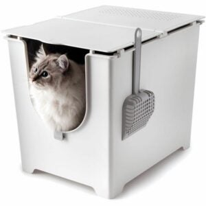 The Best Litter Box Option: Modkat Flip Litter Box with Scoop and Reusable Liner