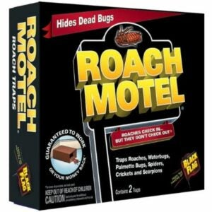 The Best Roach Bait Option: Black Flag HG-11020-1 Roach Motel Insect Trap