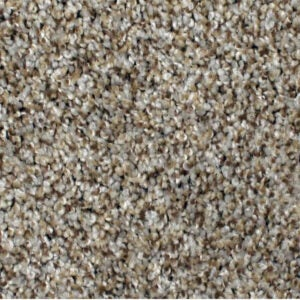 Best Carpet for Pets Options: STAINMASTER PetProtect Textured Carpet
