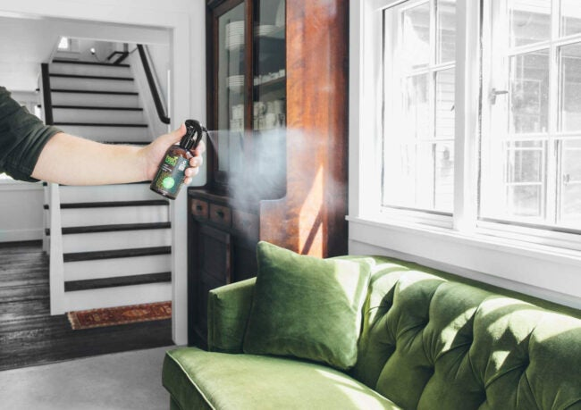 最佳空气清新剂选择