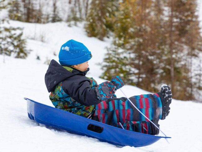 Best Sled Options