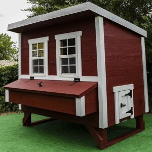 The Best Chicken Coop Options for the Homestead: OverEZ