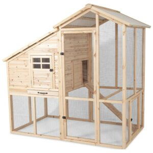 The Best Chicken Coop Options for the Homestead: Petmate