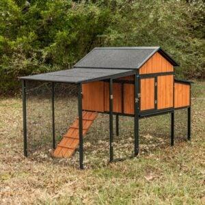 Homestead的最佳鸡舍选项:生产者的骄傲