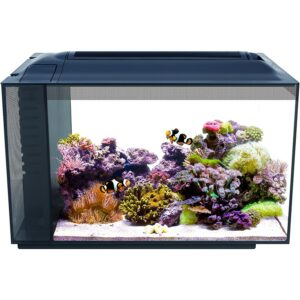 最好的鱼缸选项:氟瓦斯Evo Saltwater鱼缸水库套件