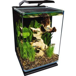 最好的鱼缸选项:Marineland肖像玻璃LED水族箱套件
