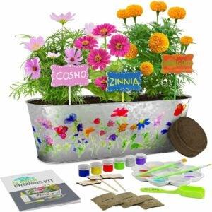 适合儿童的最佳花园套餐选项:油漆与植物花卉生长套件