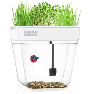 The Best Indoor Garden Option: Back to the Roots Water Garden Aquaponic Ecosystem