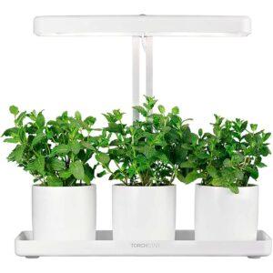 The Best Indoor Garden Option: TORCHSTAR Indoor Garden Kit