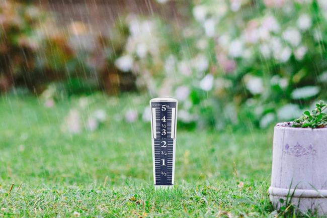 The Best Rain Gauge