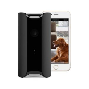 The Best Hidden Camera Option: CANARY View Indoor Security Camera 1080p HD