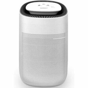 用于宠物的最佳空气净化器选项:Genergy Solbi 1000ml空气除湿机W /空气净化