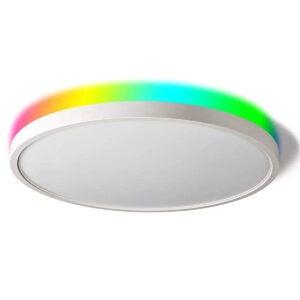 Best LED Ceiling Light Options: TALOYA Smart Ceiling Light Flush Mount LED WiFi