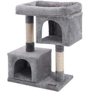 最佳猫抓职位选项:Feandrea猫树为大猫