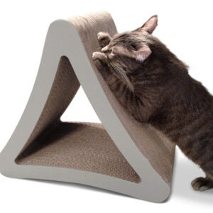 最好的猫抓职业选项:Petfusion 3针垂直猫刮柱