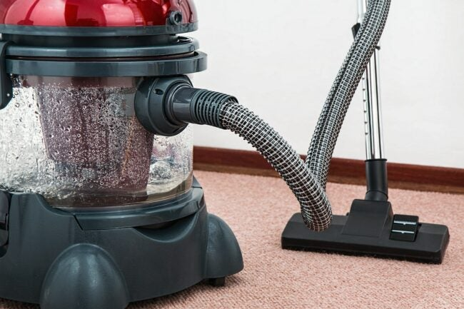 Best Portable Carpet Cleaner Options