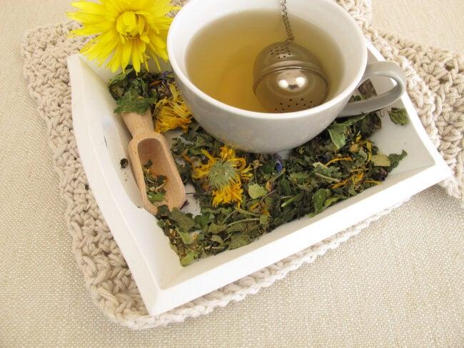 Best Tea Infuser Options
