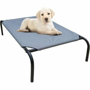 The Best Elevated Dog Bed Option: PHYEX Heavy Duty Steel-Framed Elevated Pet Bed