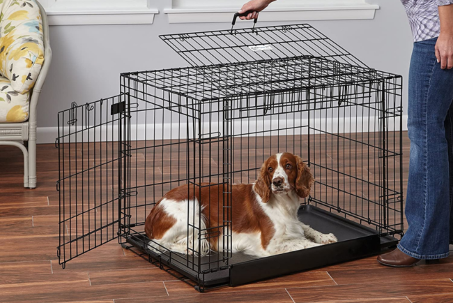 The Best Dog Crate Options