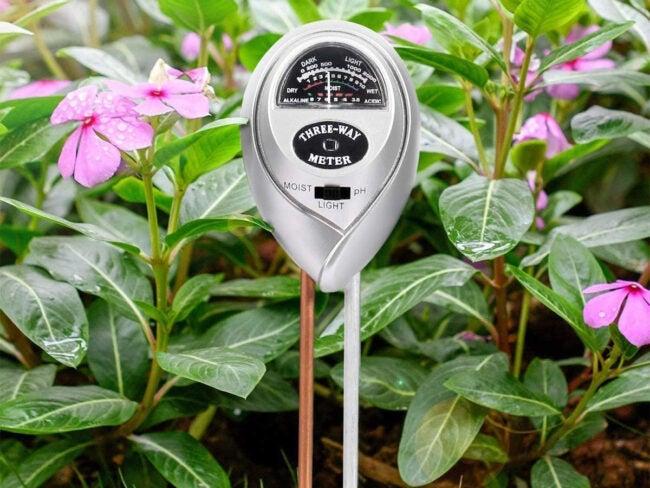 The Best pH Meter Options