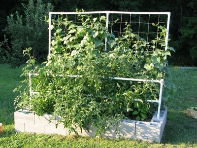 DIY with Cinder Blocks- Raised Garden Bed