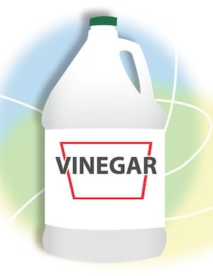 Natural Home Cleaning - Vinegar
