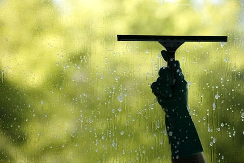 How to Clean Windows - Squeege