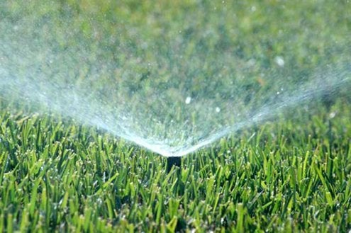 How to Water Your Lawn - Top Tips - Bob Vila