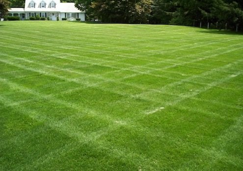 Grass Alternatives - Grass Alternatives - Keep Off The Grass - Bob Vila